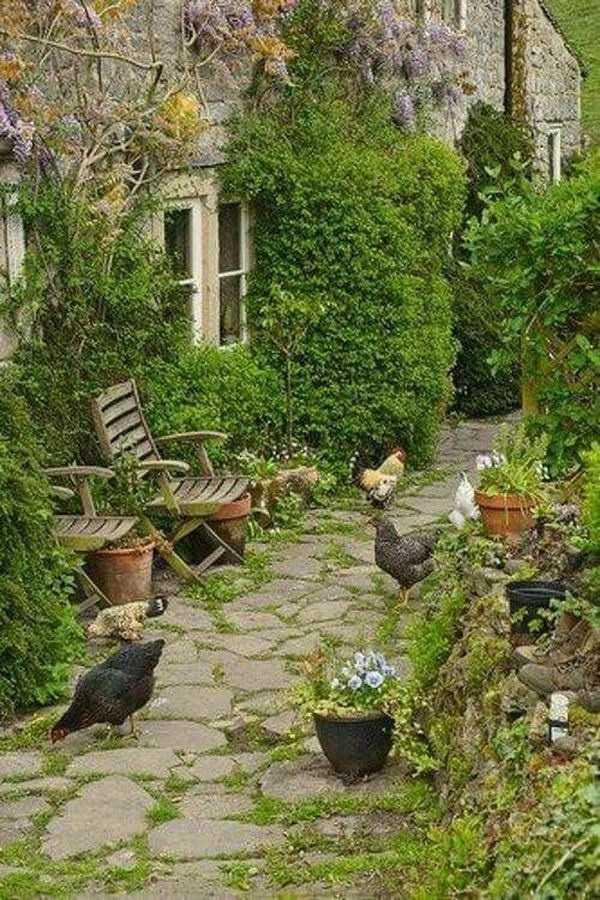 backyard landscaping ideas on a budget1