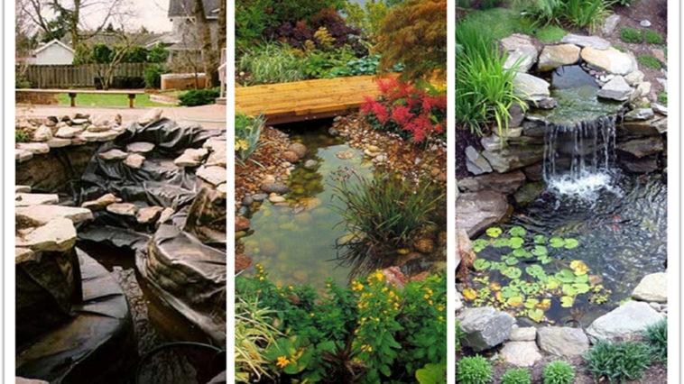 rain garden design ideas