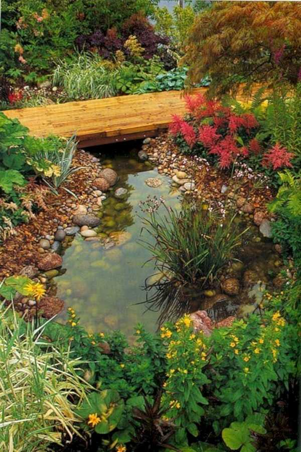 rain garden design ideas1