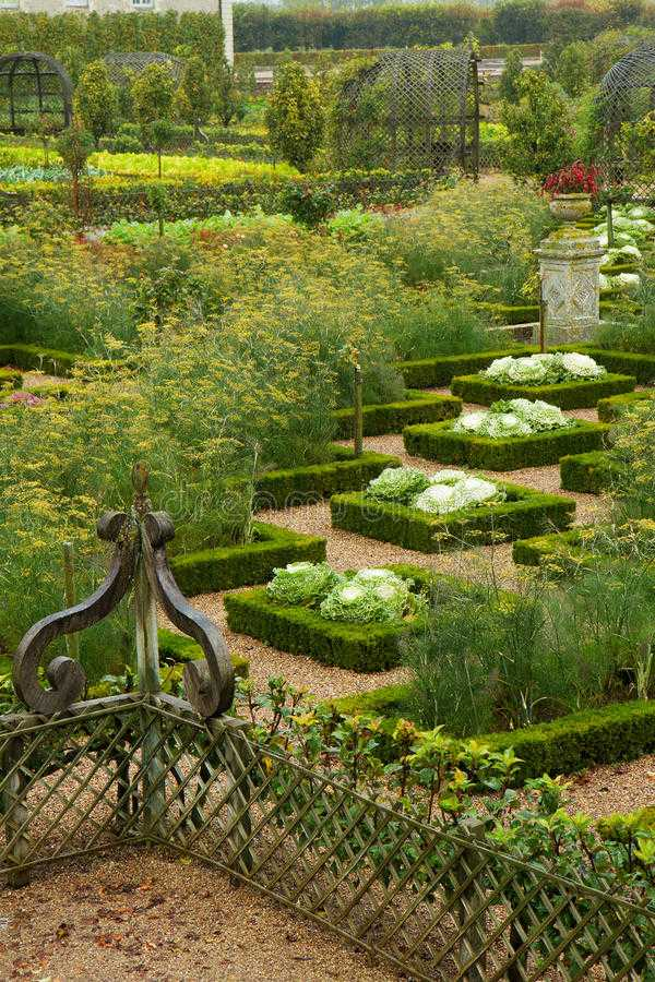 vegetable garden design13