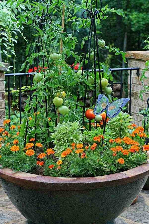 vegetable garden design2