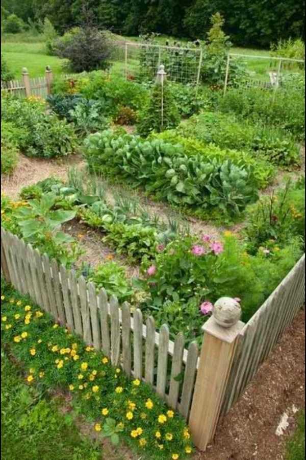 vegetable garden design28